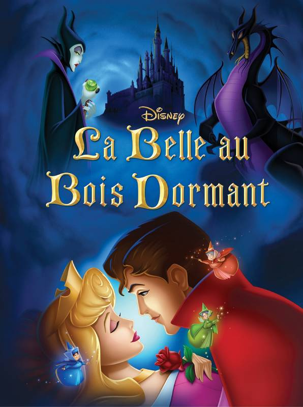 Livre la belle au bois dormant disney cin ma walt for La belle au bois flotte