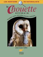 La chouette effraie, description, moeurs, observation, protection, mythologie...