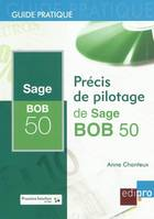 Precis De Pilotage De Sage Bob 50
